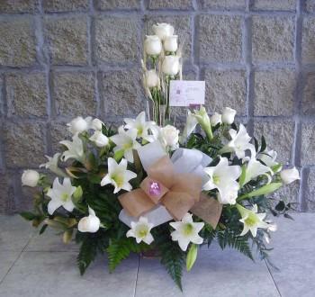 Condolencias-93
